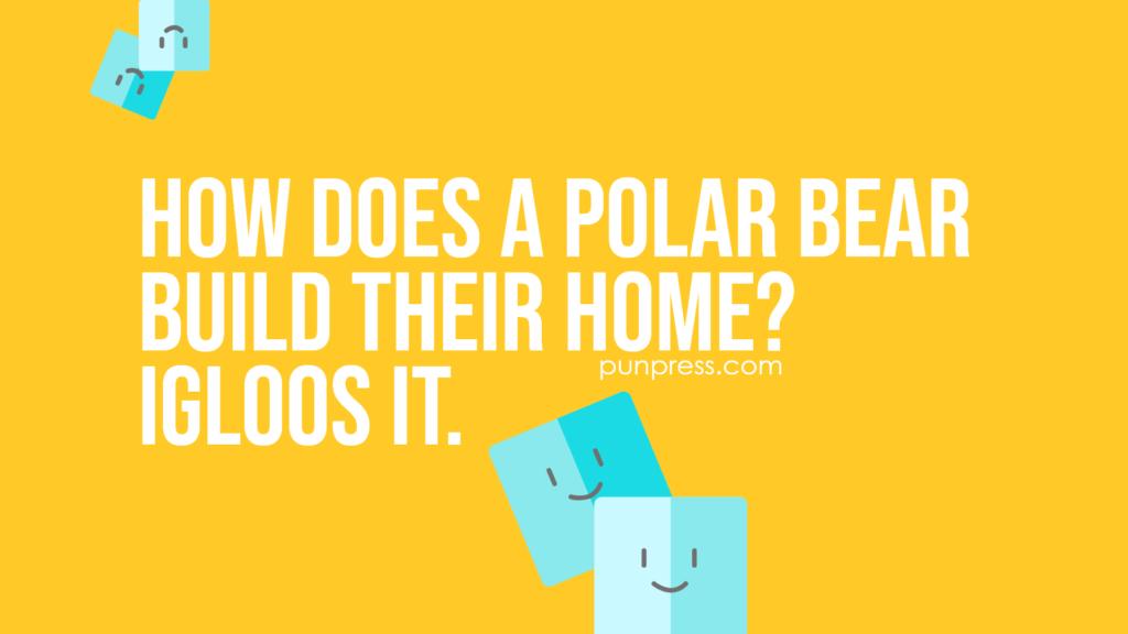 how does a polar bear build their home? igloos it - ice puns