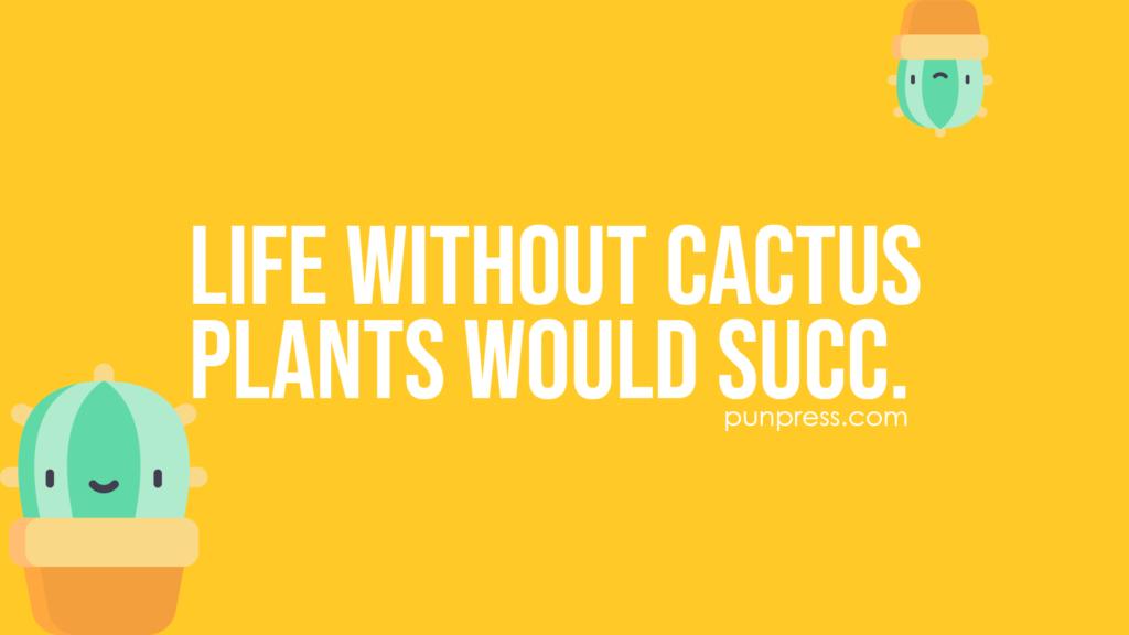 life without cactus plants would succ - cactus puns