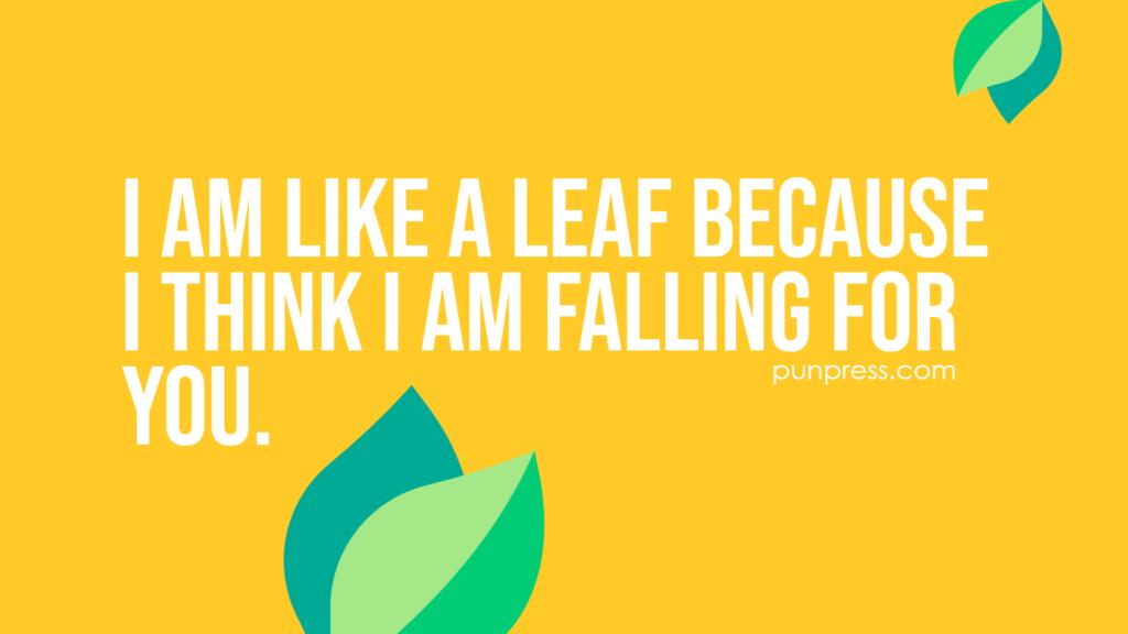 i am like a leaf because i think i am falling for you - leaf puns